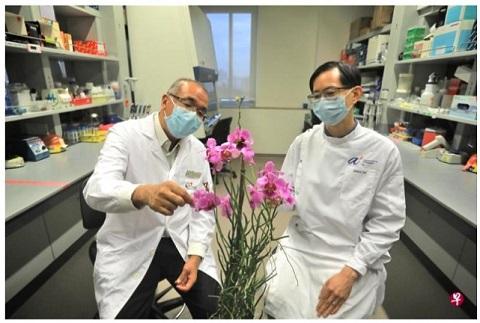 新保集团杜克—国大设新研究院 开发植物营养及药用价值