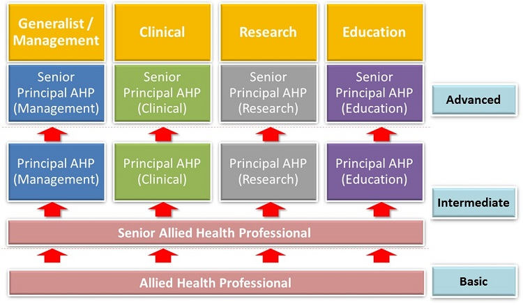 Allied Health Professionals Singhealth