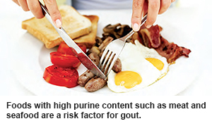 High purine content food is a risk factor for gout according to SGH.