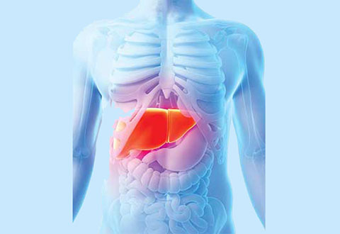 Improving survival outcomes in liver cancer