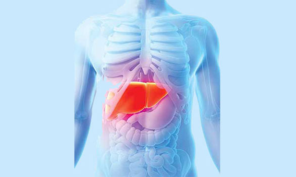liver cancer specialist in singapore
