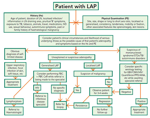 Approach to an adult with lymphadenopathy in primary care