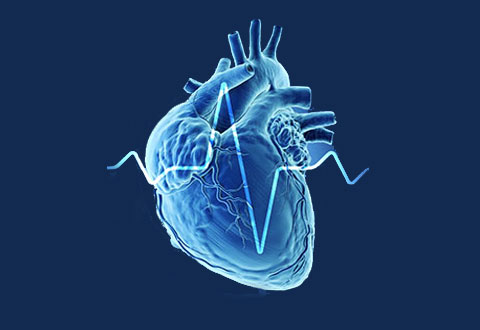 ​Shedding Light on Asian Cardiovascular Risk Through Technology: The SingHEART Study