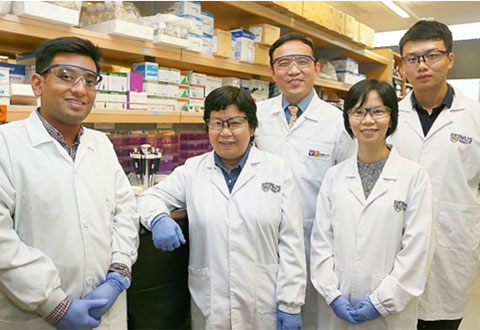 Progress in Stem Cell Treatment Offers New Hope