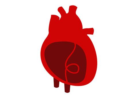 New cardiac fibrosis study identifies key proteins that translate into heart disease