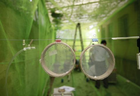 Anti-mosquito fabrics for malaria prevention