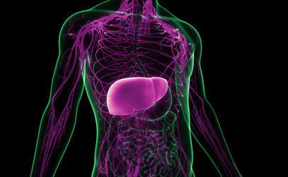 Landmark study launched to detect liver cancer early in Singapore