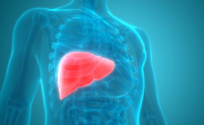 Liver Cancer: Risks, Symptoms and Treatment