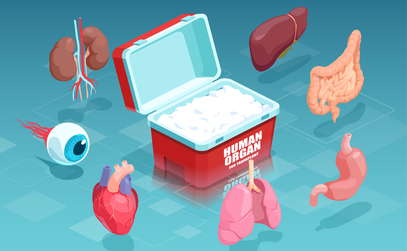 The Different Types of Organ Transplants